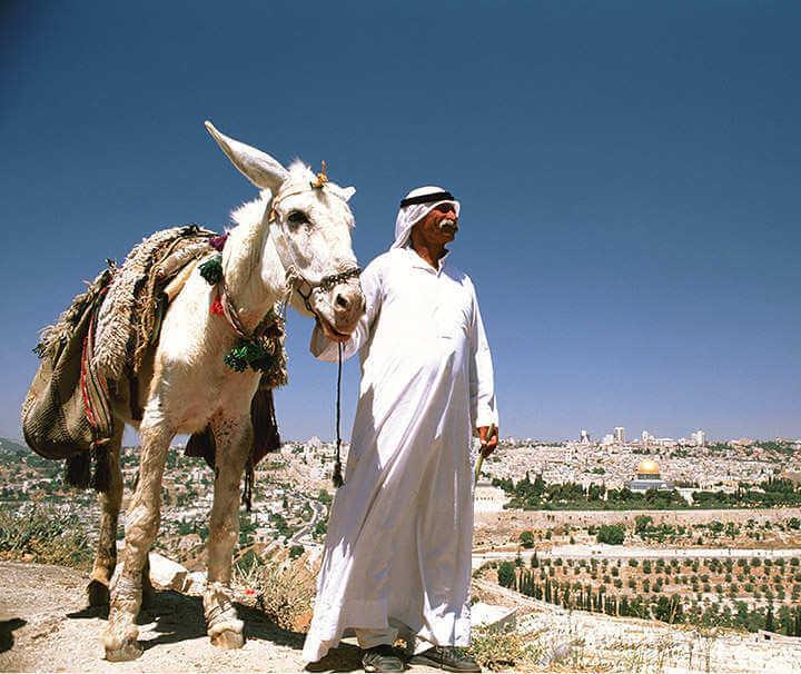 autotour israel